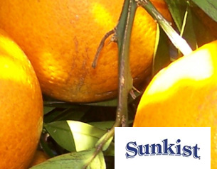 Customer Q & A: Sunkist