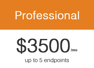 Pricing – Professional