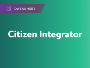 Citizen Integrator Datasheet