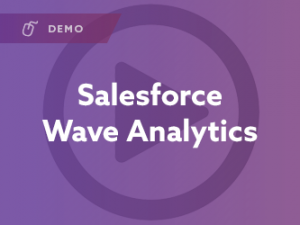 Salesforce Wave Analytics Demo