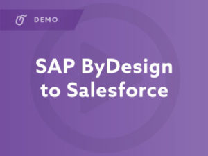 SAP ByDesign to Salesforce Demo